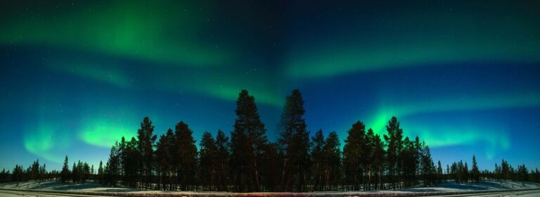 Day Trip To Lapland