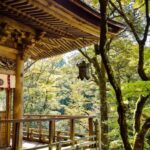 What is the most beautiful part of Japan?