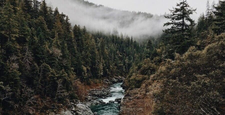 Where is Parvati Valley? The Perfect Guide For First Time Visitors