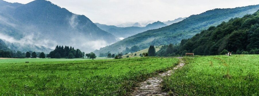 Where is Barot Valley? The perfect guide for Delhi To Barot Himachal Pradesh